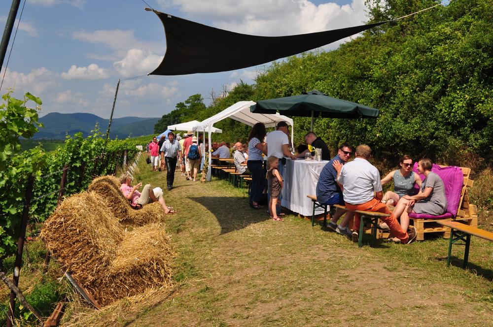 Hofgarten Rosa Gästezimmer Ilbesheim Südliche Weinstrasse Kalmitweinfest 5