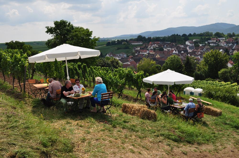 Hofgarten Rosa Gästezimmer Ilbesheim Südliche Weinstrasse Kalmitweinfest 7