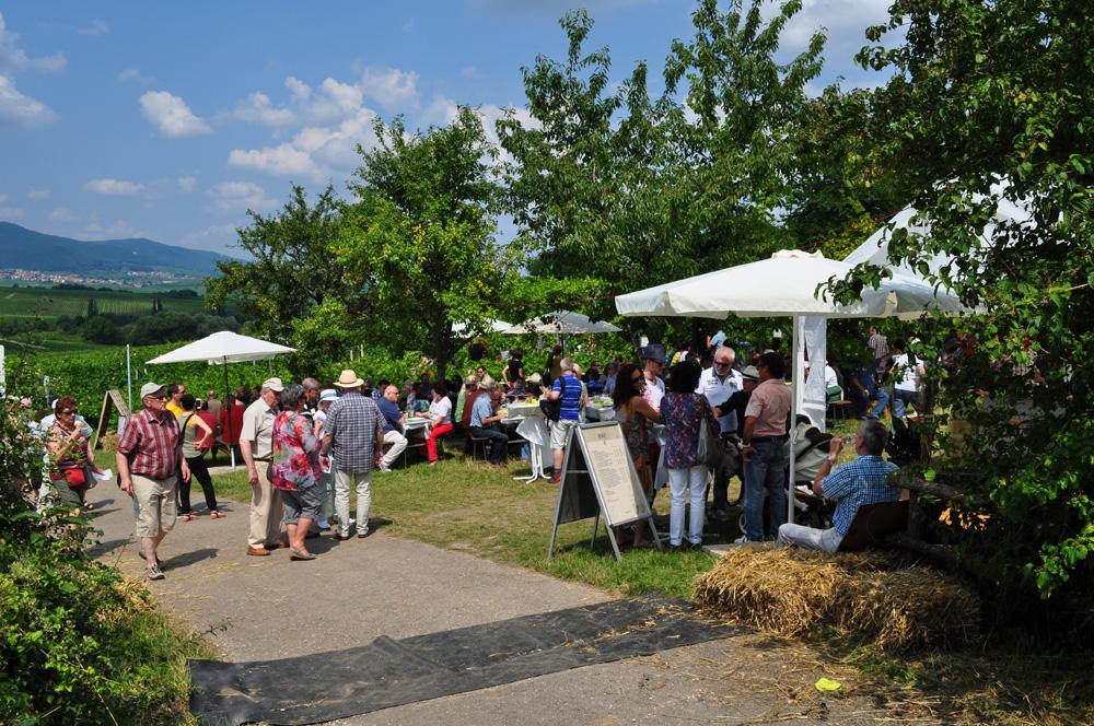 Hofgarten Rosa Gästezimmer Ilbesheim Südliche Weinstrasse Kalmitweinfest 9