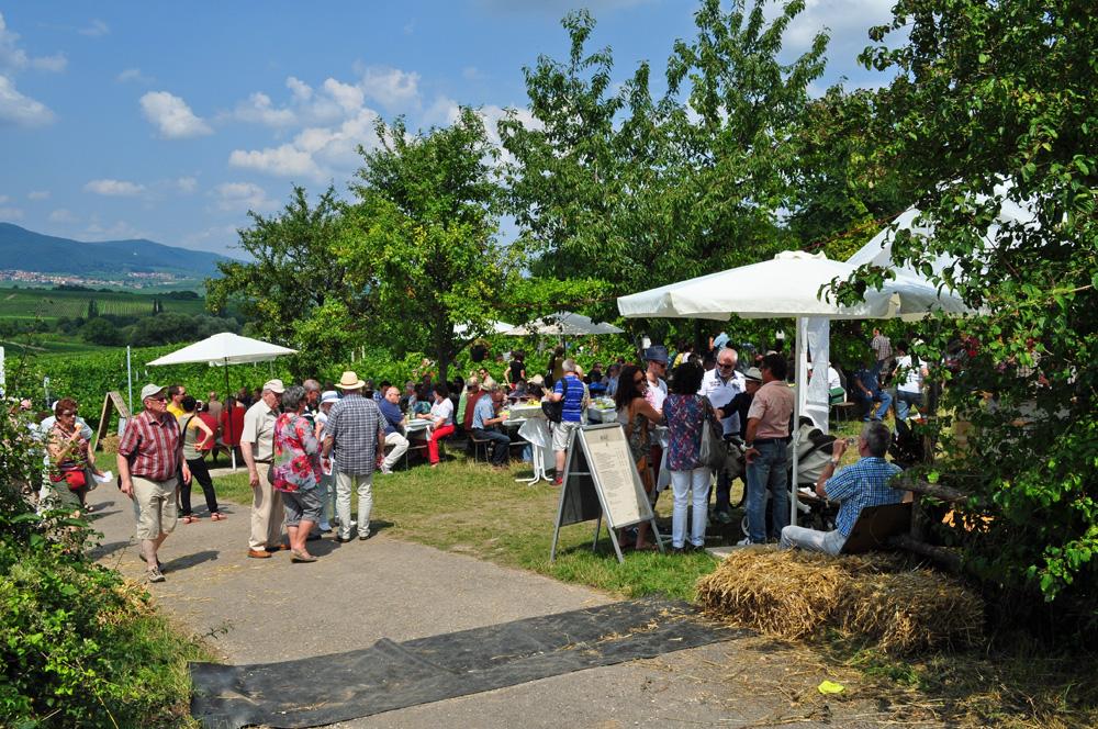 Hofgarten Rosa Gästezimmer Ilbesheim Südliche Weinstrasse Kalmitweinfest