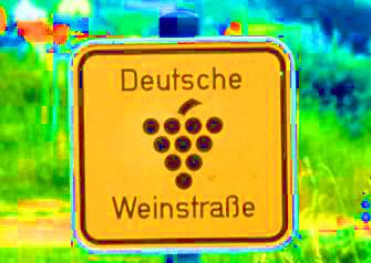 Hofgarten Rosa Gästezimmer Ilbesheim Deutsche Weinstrasse